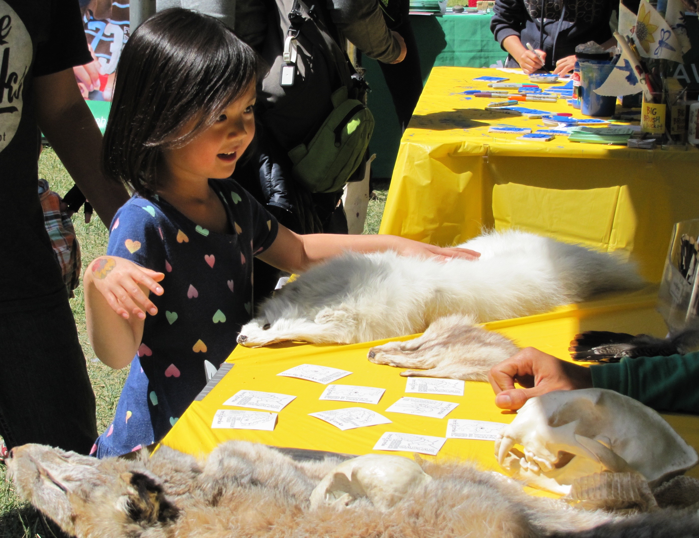 Science@Cal Cal Day 2015